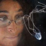 Медуза-убийца размером с ноготь. Обитает в Австралии. В отличие от других медуз, есть мозг и глаза. …