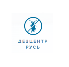 Дезцентр-Русь