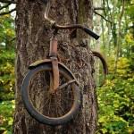 Мальчик оставил свой велосипед прикованным к дереву когда уходил на войну в 1914 году. Он не вернулс…