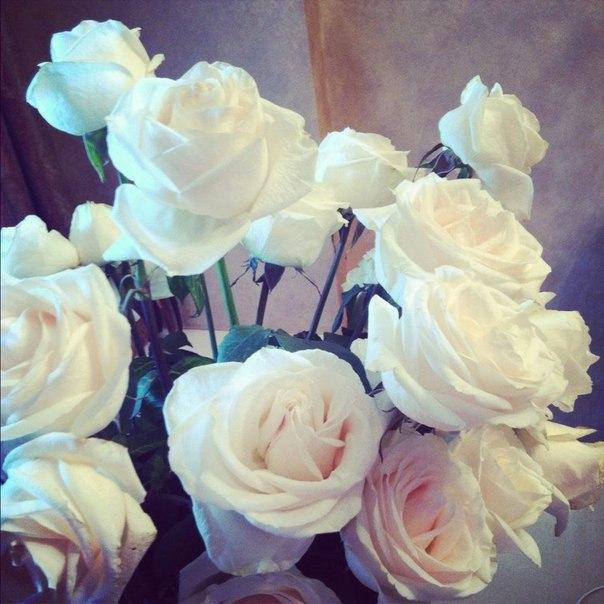 картинки с цветами на аву