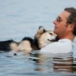 Мужчина заботится о своем 19-летнем больном псе