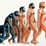 13 фактов об организме человека