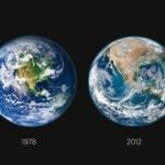 Снимки NASA. Вырубка лесов в Америке