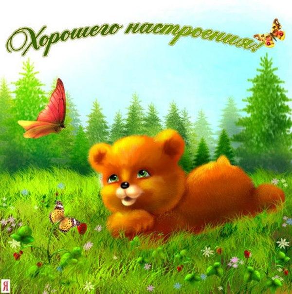 http://interesnotop.ru/wp-content/uploads/2014/03/wpid-OTt1_Yh9iH8.jpg