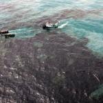 У берегов Туниса образовалось огромное черное пятно